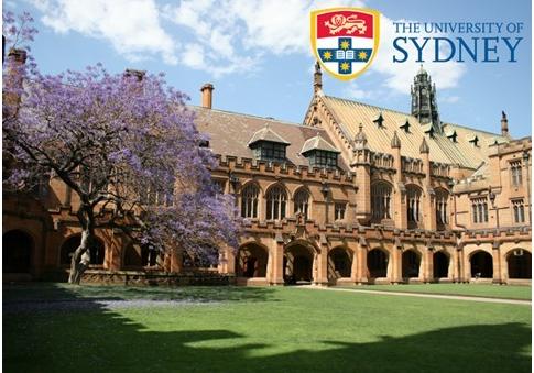 闫同学悉尼大学成功案例