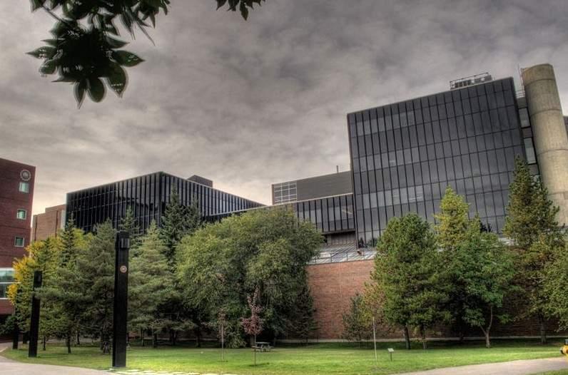 加拿大阿尔伯塔大学-学校介绍-柳橙网