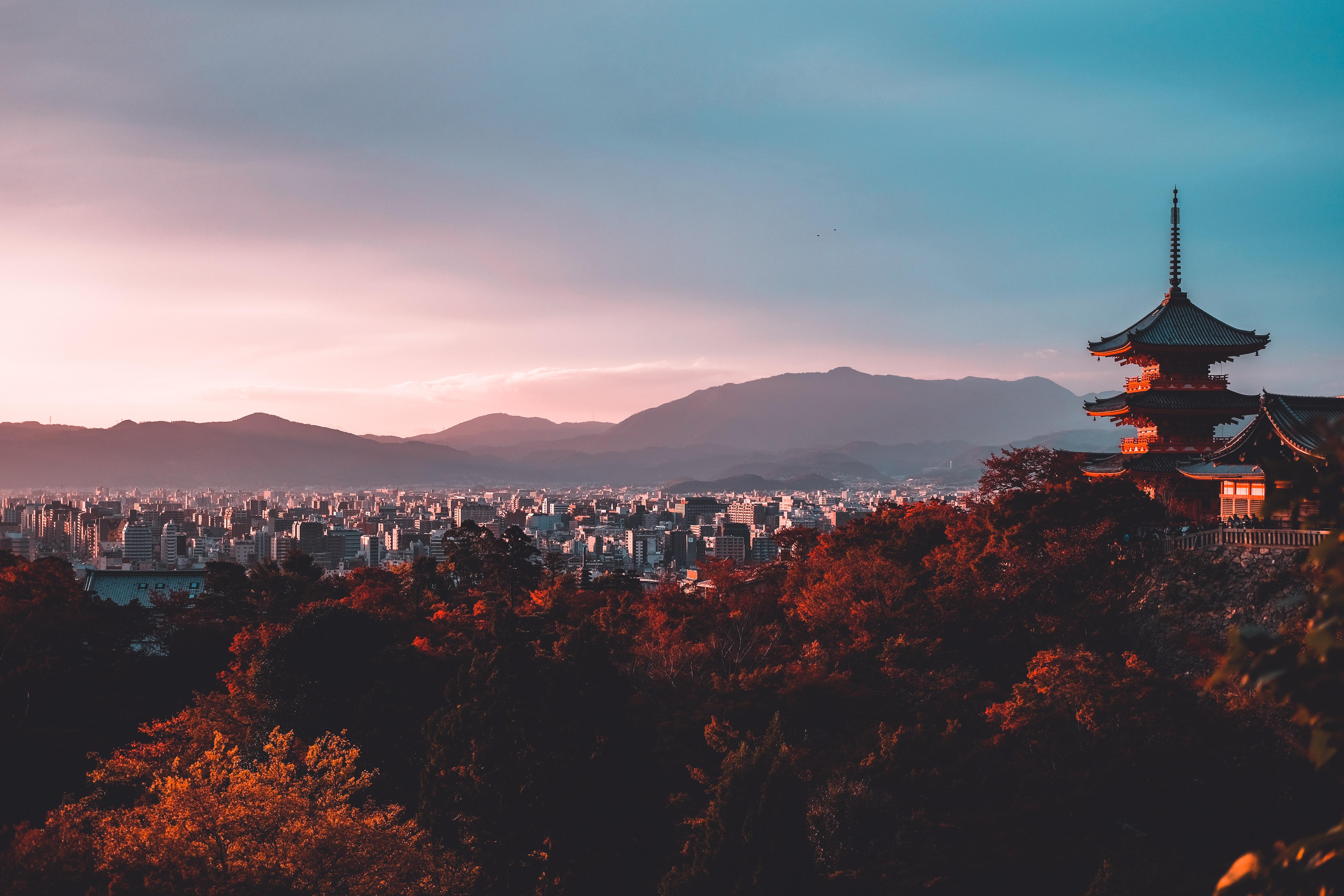 日本精英大学博士留学服务+日本留学签证