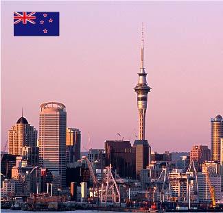 新西兰本科预科/国际桥梁课程留学服务
