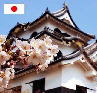 日本明德中学留学申请+日本签证服务优惠套餐