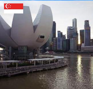 新加坡幼儿园&小学全程留学服务