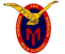 诺维莫里尔塔中学
