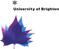 布莱顿大学