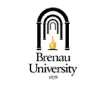 布莱诺大学